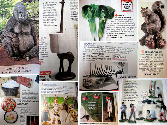You gotta hand it to Skymall, though-- they are really great at absurd.